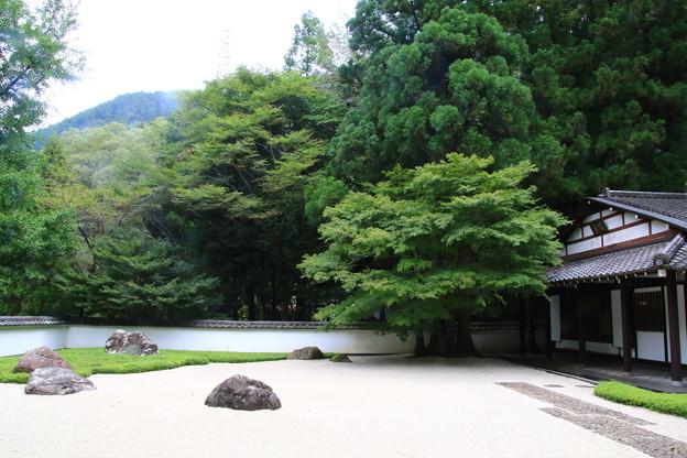 Photos: 玉堂美術館 200917 03