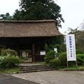 Photos: 塩船観音寺 200917 01