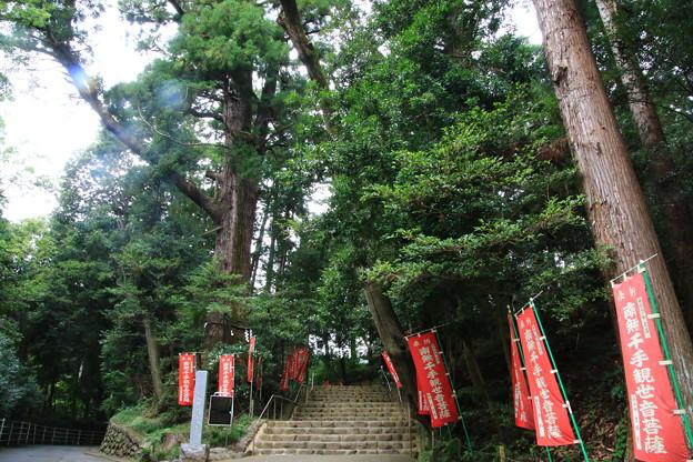 塩船観音寺 200917 02