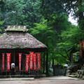Photos: 塩船観音寺 200917 04