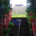 Photos: 塩船観音寺 200917 05
