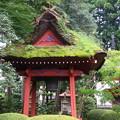 Photos: 塩船観音寺 200917 06