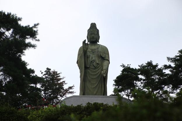 塩船観音寺 200917 08