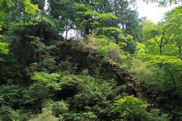 榛名神社 200929 06
