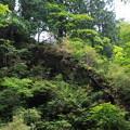 Photos: 榛名神社 200929 06