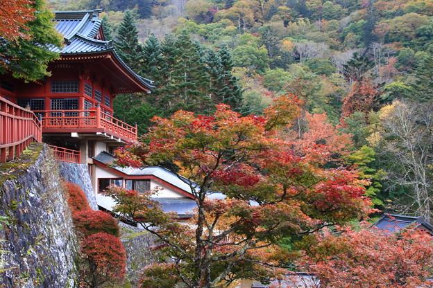 中禅寺 201020 03