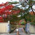 Photos: 翠楽苑 201111 01