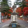 Photos: 南湖神社 201111 01
