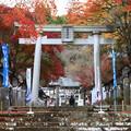 南湖神社 201111 02