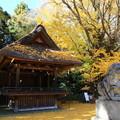 Photos: 玉敷神社 201121 02