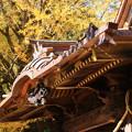 Photos: 玉敷神社 201121 03