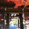 安楽寺(吉見観音) 201123 01