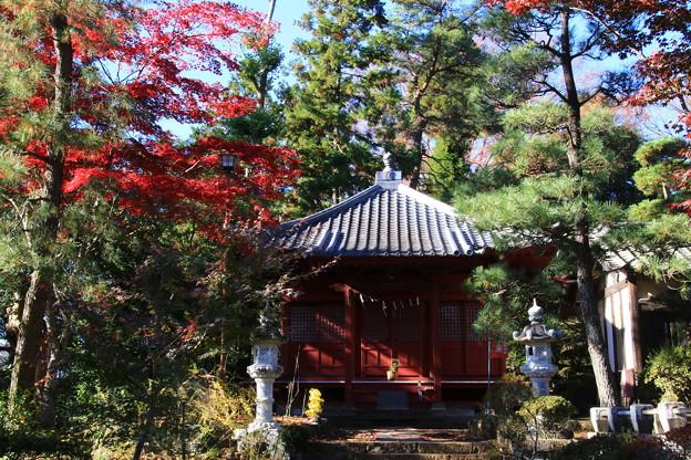 Photos: 安楽寺(吉見観音) 201123 02