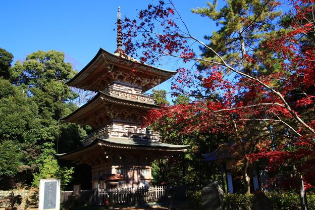 Photos: 安楽寺(吉見観音) 201123 03