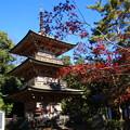 安楽寺(吉見観音) 201123 03