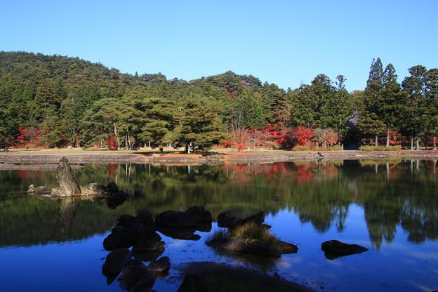 毛越寺 201112 01