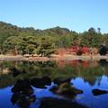 Photos: 毛越寺 201112 01