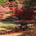 Photos: 毛越寺 201112 03