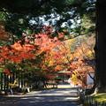 Photos: 毛越寺 201112 04
