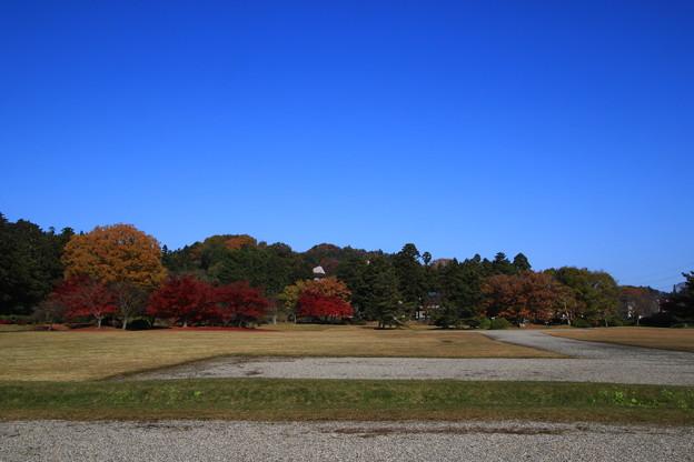 Photos: 観自在王院跡 201112 01
