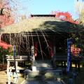 Photos: 中尊寺 201112 07
