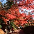 Photos: 中尊寺 201112 12