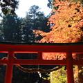 Photos: 中尊寺 201112 13