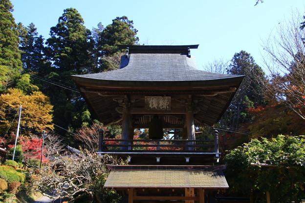 雲巌寺 201117 05