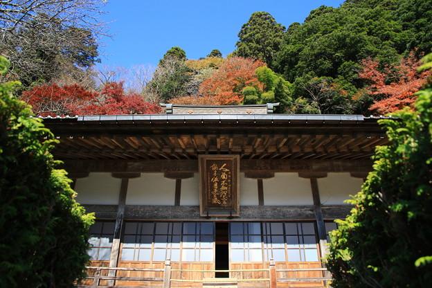 雲巌寺 201117 07