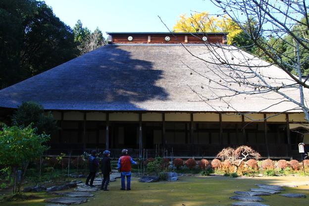 大雄寺 201117 05