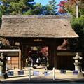 Photos: 平林寺 201130 01