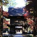 Photos: 平林寺 201130 02
