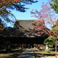 Photos: 平林寺 201130 03