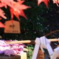 Photos: 行田八幡神社 201207 03
