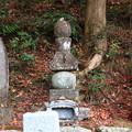 Photos: 龍穏寺 201210 08