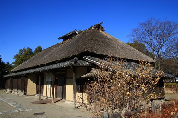 Photos: さきたま古墳公園 210107 02