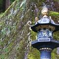Photos: 輪王寺大猷院 201021 13