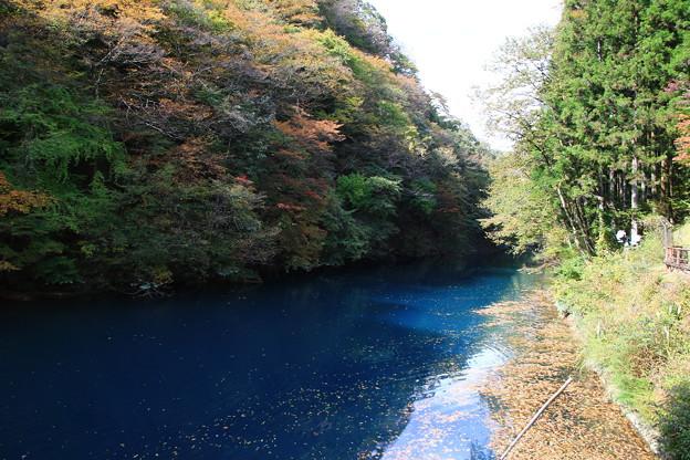 桃太郎の滝 201027 02