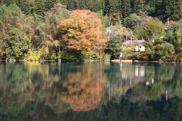 中之条ダム 201027 02