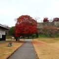 Photos: 小峰城跡 201111 01