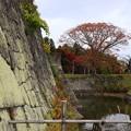 Photos: 小峰城跡 201111 03