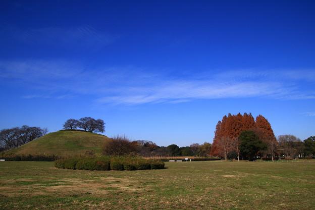 さきたま古墳公園 201207 03