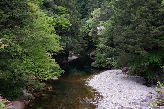 柴木川(太田川水系)