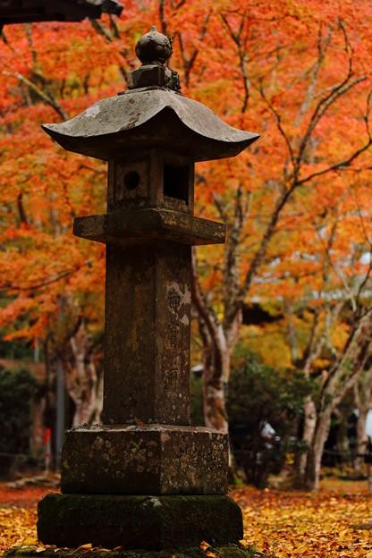 雨の小松寺にて。