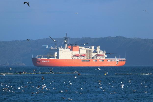 南極観測船