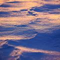 Photos: 風の足跡
