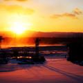 Photos: 地吹雪の朝