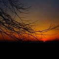 Photos: 春の夜明け3/31