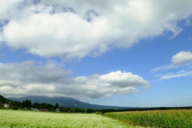 那須のお山と蕎麦畑と雲と