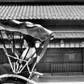 Photos: 小江戸 川越